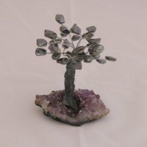 Árvore pequena Hematita
